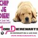 Juni Chipmaand! Chip uw dier voor €17.50